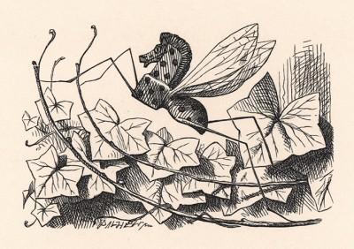 Взгляни-ка на тот куст! Там на ветке сидит... Знаешь кто? Баобабочка! (иллюстрация Джона Тенниела к книге Льюиса Кэрролла «Алиса в Зазеркалье», выпущенной в Лондоне в 1870 году)