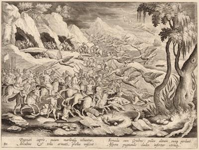 Вооружённые луком и стрелами пигмеи, которых везут козы и овцы,устраивают горячее сражение с журавлями: они уничтожают детенышей и яйца птиц. В битве и та и другая сторона получают серьезный ущерб (Venationes Ferarum, Avium, Piscium, лист 80)
