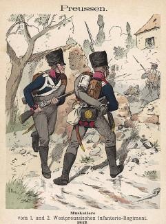 Униформа 1-го и 2-го западно-прусских пехотных полков образца 1813 г. Uniformenkunde Рихарда Кнотеля, часть 2, л.45. Ратенау (Германия), 1891