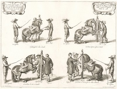 Прыжок верховой лошади с поджатыми передними ногами -- курбет в присутствии герцога Ньюкасла (из бестселлера XVII века La Méthode Nouvelle et Invention extraordinaire de dresser les Chevaux... герцога Ньюкасла. Антверпен. 1658 год (лист 24))