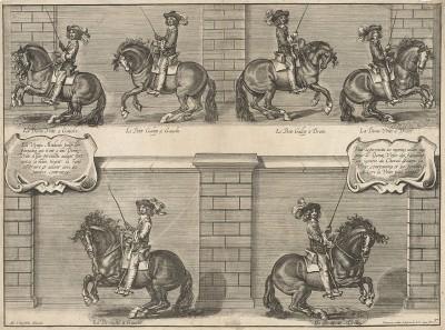 Герцог Ньюкасл демонстрирует различные аллюры лошади. La methode nouvelle et invention extraordinaire de dresser les chevaux… л.37. Лондон, 1737
