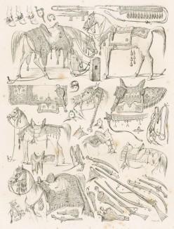 """Упряжь и сёдла арабских скакунов, рисованные с натуры во время путешествия по Египту герцога Максимилиана Баварского в 1838 году (из """"Путешествия на Восток..."""" герцога Максимилиана Баварского. Штутгарт. 1846 год (лист VI))"""