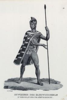 Знатный житель Гавайских островов (лист 13 второго тома работы профессора Шинца Naturgeschichte und Abbildungen der Menschen und Säugethiere..., вышедшей в Цюрихе в 1840 году)