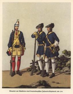 1700 год. Гренадер (слева) и мушкетёры бранденбургских пехотных полков (из популярной в нацистской Германии работы Мартина Лезиуса Das Ehrenkleid des Soldaten... Берлин. 1936 год)