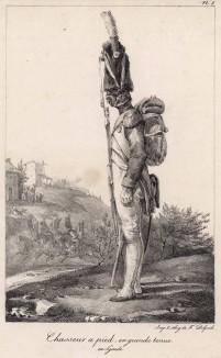 Пеший егерь в парадной форме (редкая литография Н.-Т. Шарле, посвящённая гвардии недавно свергнутого Наполеона. Париж. 1817 год)