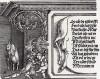 Правая сторона надписи на шкуре оленя (деталь дюреровской Триумфальной арки императора Максимилиана I)