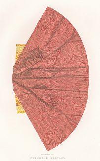 Царский становой кафтан (изображение 3). Древности Российского государства..., отд. II, лист № 50, Москва, 1851.