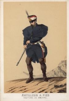 Артиллерист армии Испании в полевой форме образца 1860 года (из альбома литографий L'Espagne militaire, изданного в Париже в 1860 году)