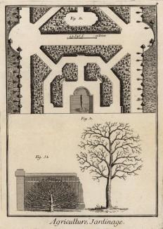 Садоводство. Роща с водоёмом. Дерево-шпалера. (Ивердонская энциклопедия. Том I. Швейцария, 1775 год)