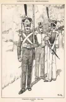 Гренадеры шведской лейб-гвардии в униформе образца 1820-33 гг. Svenska arméns munderingar 1680-1905. Стокгольм, 1911