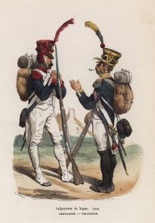 1808 год. Гренадер и стрелок французской линейной пехоты (из популярной работы Histoire de l'empereur Napoléon (фр.), изданной в Париже в 1840 году с иллюстрациями Ораса Верне и Ипполита Белланжа)
