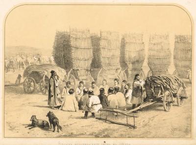 Роздых молдавского обоза в степи (Русский художественный листок. № 26 за 1853 год)
