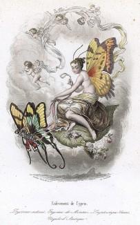 Похищение бабочками Афродиты Киприды (богиня сама изображена бабочкой). Les Papillons, métamorphoses terrestres des peuples de l'air par Amédée Varin. Париж, 1852