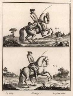 Выездка. Галоп и неверный галоп (Ивердонская энциклопедия. Том VII. Швейцария, 1778 год)