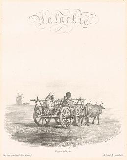 "Валахские крестьяне. Voyage dans la Russie méridionale et la Crimée…, л.9 (фронтиспис главы ""Валахия""). Париж, 1848"