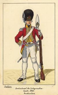 1805 г. Младший офицер лейб-гренадерского полка королевства Саксония в парадной форме с примкнутым багинетом. Коллекция Роберта фон Арнольди. Германия, 1911-29