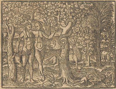 Грехопадение Адама и Евы. Иллюстрация к самому красивому изданию Библии, созданному в середине XVI века в Виттенберге (издатель Ганс Крафт).