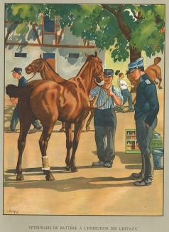 Ветеринары швейцарской армии во время Первой мировой войны. Notre armée. Женева, 1915