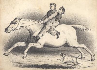 Лошадь, испуганная собакой. Литография П.Гроува. Лондон, 1847