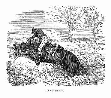Участник стипл-чейза -- вида скачек по пересечённой местности до заранее условленного пункта, проводимых в графстве Нортгемптоншир, чья лошадь выбилась из сил (The Illustrated London News №101 от 06/04/1844 г.)
