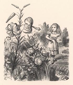 Ах, Лилия... Как жалко, что вы не умеете говорить! (иллюстрация Джона Тенниела к книге Льюиса Кэрролла «Алиса в Зазеркалье», выпущенной в Лондоне в 1870 году)