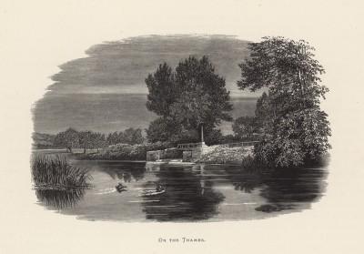 """Утки приземляются на Темзе (иллюстрация к работе """"Пресноводные рыбы Британии"""", изданной в Лондоне в 1879 году)"""