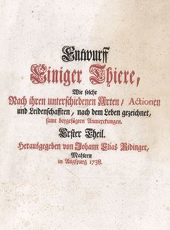 Титульный лист работы Иоганна Элиаса Ридингера Entwurff Einiger Thiere ..., Аугсбург, 1738.
