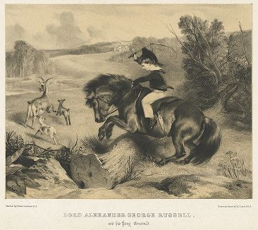 Юный лорд Александр Джордж Рассел, будущий генерал Британской армии, на своем пони по кличке  Эмеральд. Литография с оригинала Эдвина Ландсира. Лондон, 1832