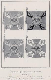 Историческое описание одежды и вооружения российских войск... А. В. Висковатова. Знамёна армейских полков в 1816--1825 гг. (лист 2407)