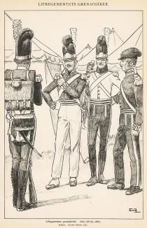 Гренадеры шведской лейб-гвардии в униформе образца 1807-20 гг. Svenska arméns munderingar 1680-1905. Стокгольм, 1911