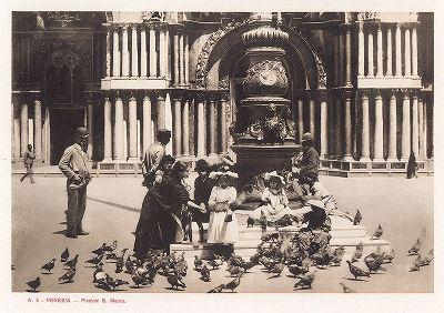 Голуби площади Сан-Марко в Венеции. Ricordo Di Venezia, 1913 год.