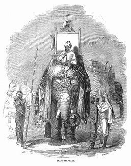 Раджа на слоне -- в колониальный период наследственный правитель одного из княжеств, входивших в состав Британской Индии, наряду с землями, находившимися под непосредственным управлением Короны (The Illustrated London News №88 от 06/01/1844 г.)