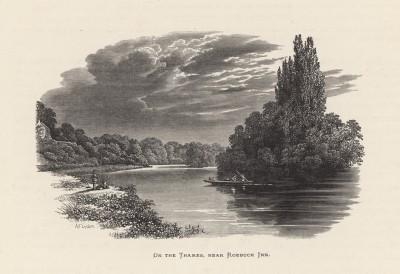 """Вид на Темзу близ Роубак Инн (иллюстрация к работе """"Пресноводные рыбы Британии"""", изданной в Лондоне в 1879 году)"""