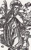 Альбрехт Дюрер. Святая Доротея (иллюстрация к Базельскому молитвеннику 1494 года)