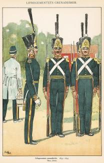 Гренадеры шведской лейб-гвардии в униформе образца 1833-45 гг. Svenska arméns munderingar 1680-1905. Стокгольм, 1911