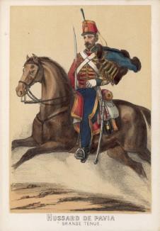 1860-е гг. Испанский гусар полка Pavia в парадной форме (из альбома литографий L'Espagne militaire, изданного в Париже в 1860 году)