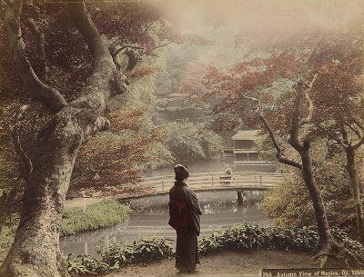 Любование осенними листьями в Одзи, Токио. Крашенная вручную японская альбуминовая фотография эпохи Мэйдзи (1868-1912).