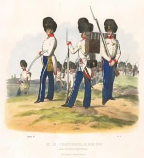 Австрийские гренадеры (из K. K. Oesterreichische Armée nach der neuen Adjustirung in VI. abtheil. II te. Abtheil. Infanterie. Лист 2. Вена. 1837 год)