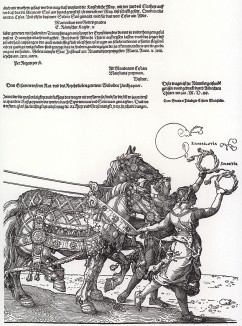 Большая Триумфальная колесница императора Максимилиана I, придуманная, нарисованная и напечатанная Альбрехтом Дюрером (часть 5)