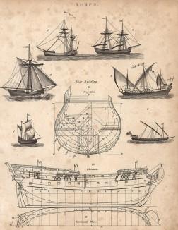 Проект корабля, вид в поперечном и продольном разрезах