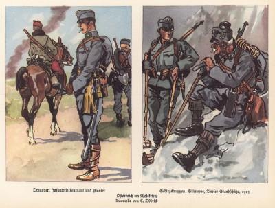 Полевая форма армии Австро-Венгрии в Первую Мировую войну (из популярной в нацистской Германии работы Мартина Лезиуса Das Ehrenkleid des Soldaten... Берлин. 1936 год)