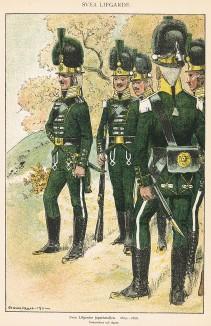 Егеря шведской лейб-гвардии в униформе образца 1803-06 гг. Svenska arméns munderingar 1680-1905. Стокгольм, 1911