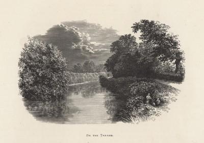 """Пикник на берегу Темзы (иллюстрация к работе """"Пресноводные рыбы Британии"""", изданной в Лондоне в 1879 году)"""