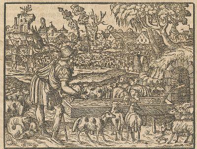 Иллюстрация к самому красивому изданию Библии, созданному в середине XVI века в Виттенберге (издатель Ганс Крафт).