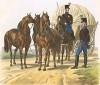 Парадная форма австрийских обозников в 1830-е гг. (из K. K. Oesterreichische Armée nach der neuen Adjustirung in VI. abtheil. IV te. Abtheil. Artillerie u. Furhrwesen. Лист 12. Вена. 1837 год)