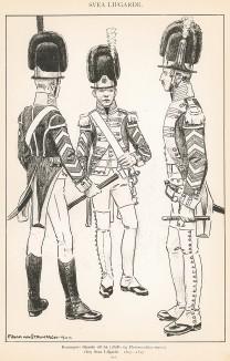 Солдаты и офицер шведской лейб-гвардии в униформе образца 1807-17 гг. Svenska arméns munderingar 1680-1905. Стокгольм, 1911