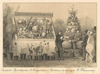 Огородные произведения А. В. Сироткина, представленные на выставка сельских произведений в большом Экзерцирь-Гаузе, в Москве (Русский художественный листок. № 34 за 1852 год)