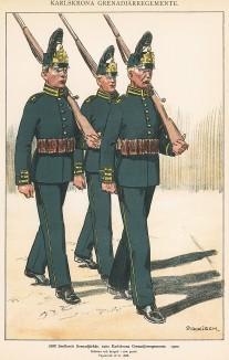 Солдаты шведских гренадерских полков Småland и Karlskrona в униформе образца 1900 г. Svenska arméns munderingar 1680-1905. Стокгольм, 1911