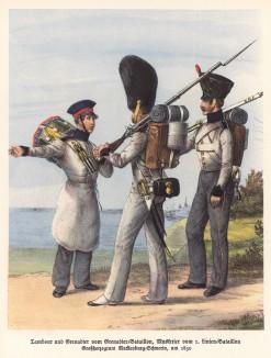 Барабанщик, гренадер и стрелок великого герцогства Мекленбург-Шверин в 1830 году (из популярной в нацистской Германии работы Мартина Лезиуса Das Ehrenkleid des Soldaten... Берлин. 1936 год)