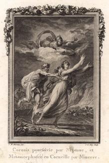 """Коронида молит богов спасти её от преследующего её Нептуна. Минерва спасительно превращает девушку в ворону и поднимает в небо (гравюра из первого тома знаменитой поэмы """"Метаморфозы"""" древнеримского поэта Публия Овидия Назона. Париж, 1767 год)"""